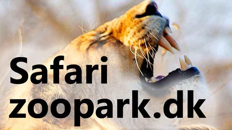 SafariZooPark.dk
